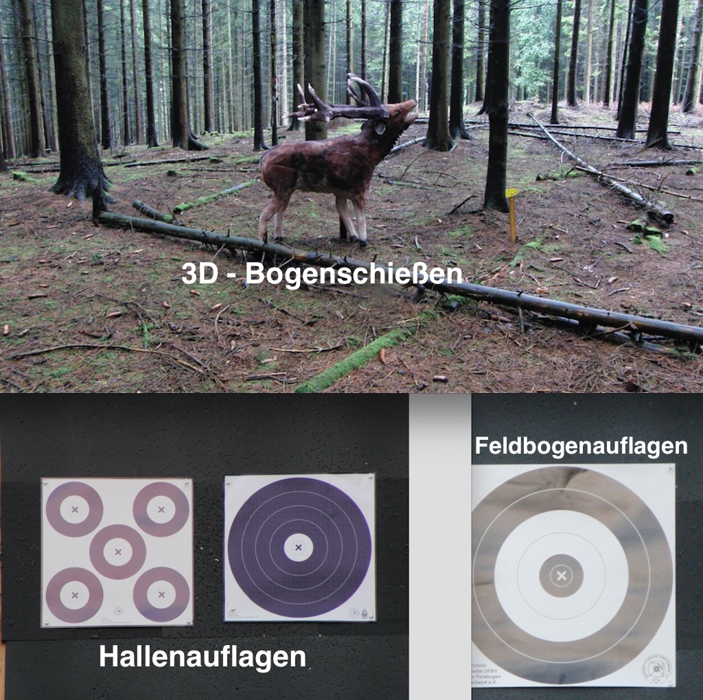 DFBV_Bonn